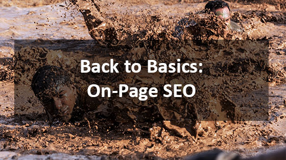 Back to Basics: On-Page SEO - Houston Web Design and SEO Company