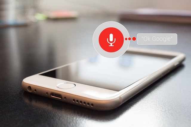 2018 marketing voice search